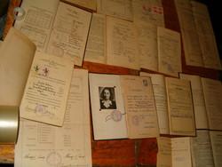 15 db iskolai születési kivonat bizonyítvány Kiskunfélegyházi Magyar Királyi Horthy István egyetem