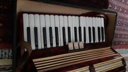 Weltmeister senola v harmónika tangóharmónika