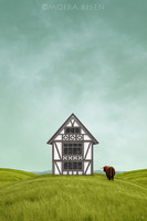 Moira Risen A dombokon túl Kortárs szignált fine art nyomat Tudor faház zöld mező tájkép skót marha