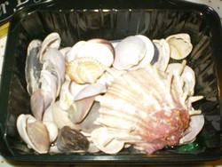 Gyüjtemény: Régebbi After Eight pléhdobozban kagylók egyben eladók.