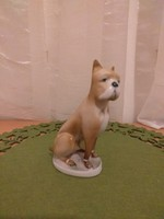 Zsolnay Boxer kutya