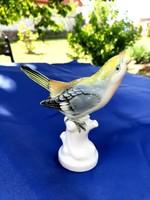 Volkstedt porcelán madárka