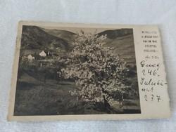 Antik képeslap (1938)
