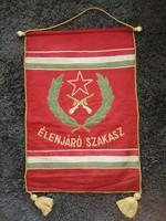 Élenjáró szakasz zászló