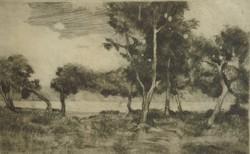 Biai Föglei István (1905-1974) : Folyóparti fák