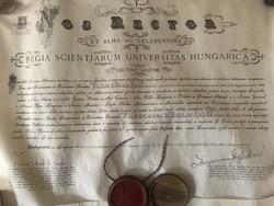 Királyi Magyar Tudományegyetem Doktori oklevél 1914 .Politika tudomány