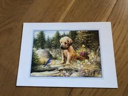 Aranyos Golden Retriever kiskutyás képeslap