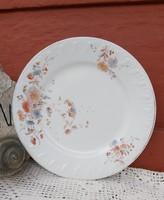 Láng M. Budapest porcelán ritka antik szecessziós lapostányér  nosztalgia darab paraszti dekoráció
