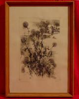 Tanulmány - Szignózott fekete-fehér rézkarc magyar művésztől üvegezett keretben (1950-60-as évek)