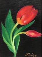 Piros tulipán - olajfestmény