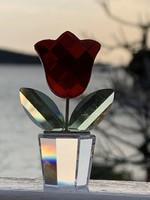 Swarovski tulipán ( pici virág, de tartós)