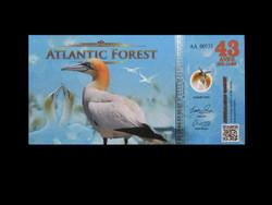 UNC - ATLANTIC FOREST - 43 AVES DOLLÁR - 2019