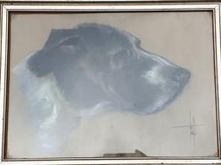 Fekete-fehér francia kopó, pasztell