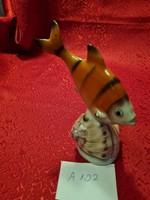 Drasche kagylós hal
