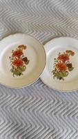 Régi szép virágos lapos tányér párban