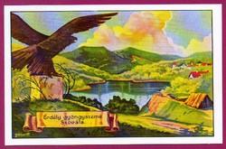 *E - 0026 - - - Irredenta (reprint) képeslap - Szováta-fürdő, Medvetó