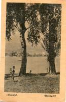 *C---062  Eredeti (nem reprint!) 60 filléres futott képeslapok: Alsógöd