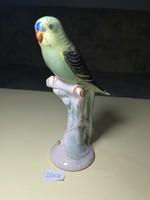 Egzotikus porcelánmadár