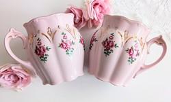 H&C Chodau rózsaszín rózsás hasas bögre 9cm 2db/db