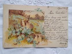 Antik/szecessziós litho/litográfiás, képeslap/üdvözlőlap tájkép, nefelejcs, vízesés 1901