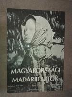 Magyarországi madárijesztők, plakát, kb.40x60
