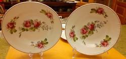 Két álomszép rózsás tányér, falra is akasztható - Dédi hagyatékból, kb.100 éves
