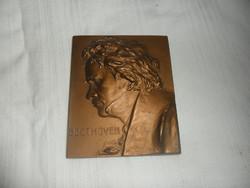 Franz Stiasny : Beethoven bronz portré plakett