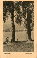 "*C"" - 047 Futott magyarországi képeslapok  Alsógöd - Duna part  (eredeti 60 filléres)"