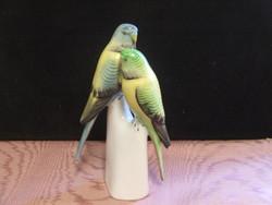 Hollóházi porcelán papagáj páros