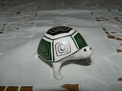 Aquincumi teknős