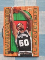 1994/95 David Robinson Hardwood Leader kosárlabda insert kártya (Flair)