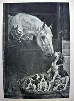"""Josef Loewy 1899 antik metszet """" Két család """" kutya és lovak rézkarc"""