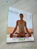 Mathias Tietke, Simone Tatay-Azllanay: Jóga (Fitten és egészségesen)