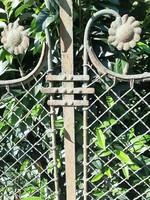 Szecessziós kovácsoltvas kerítés