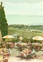 Ba 085 Színes körkép a Balaton vidékről a XX.század közepén .Ebéd a szőlőhegyen