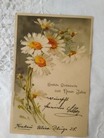 Antik/szecessziós, német litho/litográfiás képeslap//üdvözlőlap, virág, margaréta 1900-as évek eleje