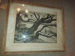 Nyári Lóránt: Papszigeti fák, rézkarc
