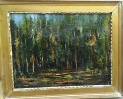 Barbizoni erdő belső