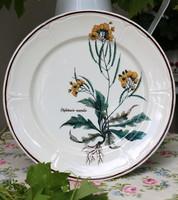 Villeroy & Boch Botanica (?) sorozatból fajansz lapos tányér, Diplotaxis muralis dekorral