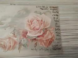 Antik képeslap. (1899).