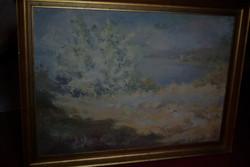 """Bruncsák András, Kecskemét 1963 ,, A tó öble, réttel """" c. festménye eladó!"""