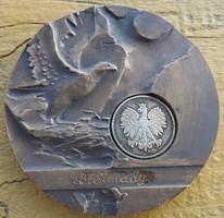 Simandi érme _ Poznan Polska 93 WORLD PHILATELIC EXHIBITION bronz érme belül ezüst érme.