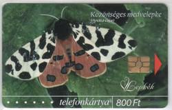 Magyar telefonkártya 0753    2004 Közönséges medvelepke GEM 6    50.000  darab