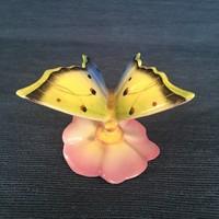 Drasche pillangó