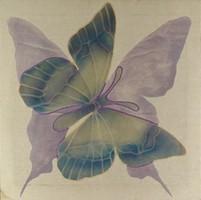 1F136 Vásárhelyi Katalin : Pillangó 60 x 60 cm