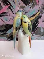 Papagályok
