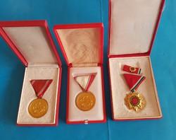 Honvédelmi Érdemérem kitüntetés 15 , 25 év