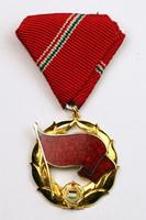 Munka Vörös Zászló Érdemrendje kitüntetés NMK596