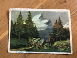 Bőgő Szarvasbika képeslap
