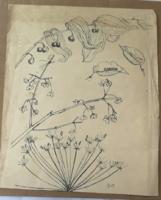 Borsos Miklós: Növények